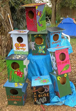 completed nestboxes sm